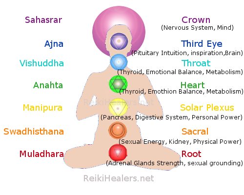 Strength of Life Seven Chakras